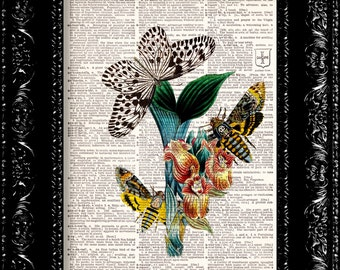 Vintage Dictionary Print Vintage Book Print Page Art Upcycled Vintage Book Art