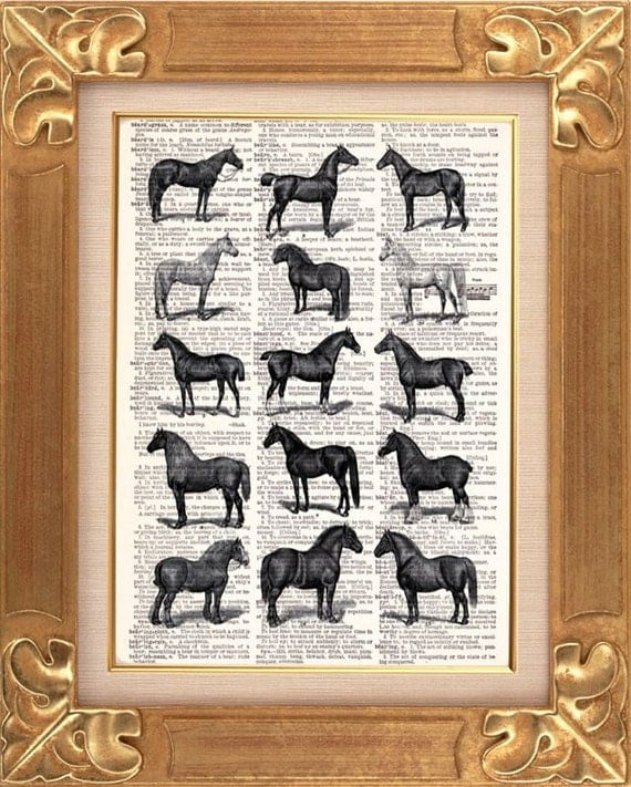 Horse Breed Poster Print - Vintage Dictionary Print Vintage Book Print Page Art Upcycled Vintage Book Art