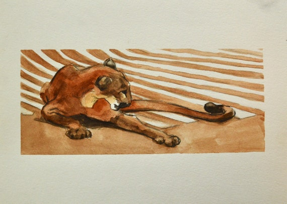 Cougar Watercolor Painting 7x10