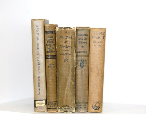 Shabby Chic Beige Books 5 Instant Library Collection Interior Design Photography Cottage Home Style Shabby Chic