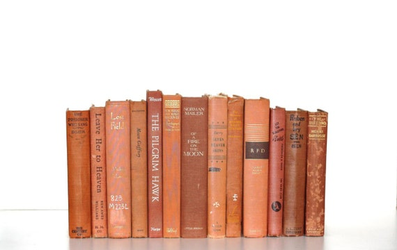 Faded Pumpkin Shabby Chic 13 Book Library Filler Collection Shabby Chic Interior Design Vintage Book Decor
