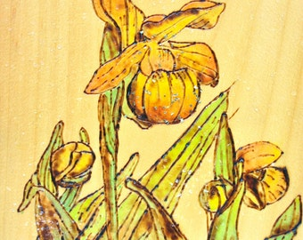 Woodburning of a Yellow Orchid