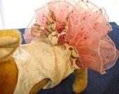 Dog Tutu Dress - Peaches and Cream