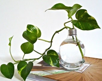 Lightbulb Vase with Clear Base / Light Bulb Home Decor, Repurposed Glass Light Bulb Vase, Upcycled Glass Lightbulb Vase (Without Plant)