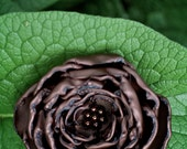 Flower Hair-Clip Headband Brooch  - Dark Chocolate  - LARGE