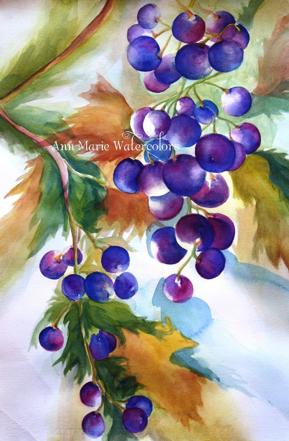 """Harvest Grapes 8"""" x 10"""" signed watercolor giclee print - still life"""