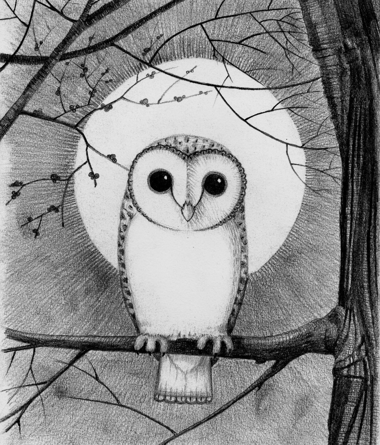 Simple Barn Owl Clip Art Pictures to Pin on Pinterest ...