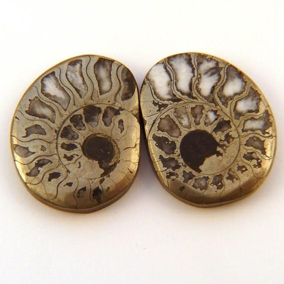 Ammonite Pair with Pyrite Designer Cab Gemstone 20 x 25 x 4 mm Free Shipping