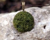 Green real preserved  MOSS NECKLACE  - Autumn green gift