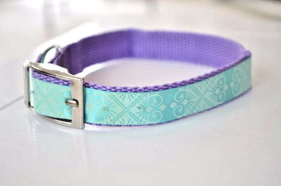 Dog Collar Tuquoise and Purple Printed