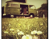 Old Daisy - FREE shipping - a green campervan in a daisy field - faded retro - 5x5 on 8x8 heavy matte paper