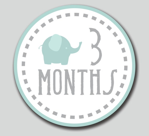 Monthly One Piece Circles Instant Download By