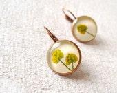 Pressed Flower Earrings - antique bronze - handmade botanical jewelry