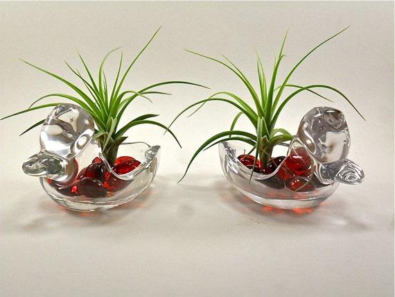 Vintage Duncan Miller Glass Ducks Air Plant Arrangements Unique Gift For Her Gifts under 50