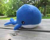 Sky the Blue Whale