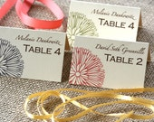 Wedding Escort, Name, Place Cards with Floral Design: customize the colors and words