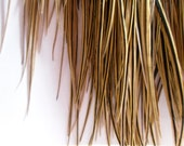 Golden Feather Extensions Hair Supplies Long Feathers for Hair Accessories Jewelry Supplies Qty5