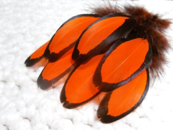 Orange Feathers, Craft Feathers, Black Laced Hen, Qty12