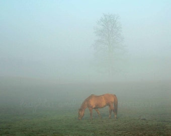 Horse in the Fog Fine Art Photography Foggy Mist Rustic Country Blue Green Brown Ombre Minimalist Modern Tree Farmhouse Home Decor Wall Art