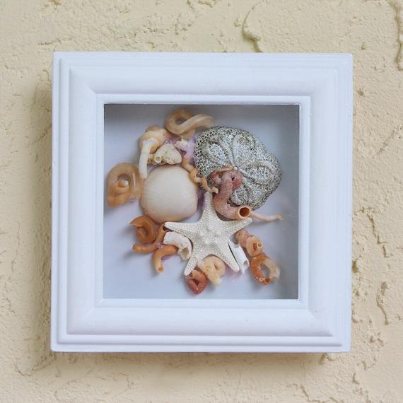 Seashell Beach Decor Starfish framed with glass by SEASTYLE