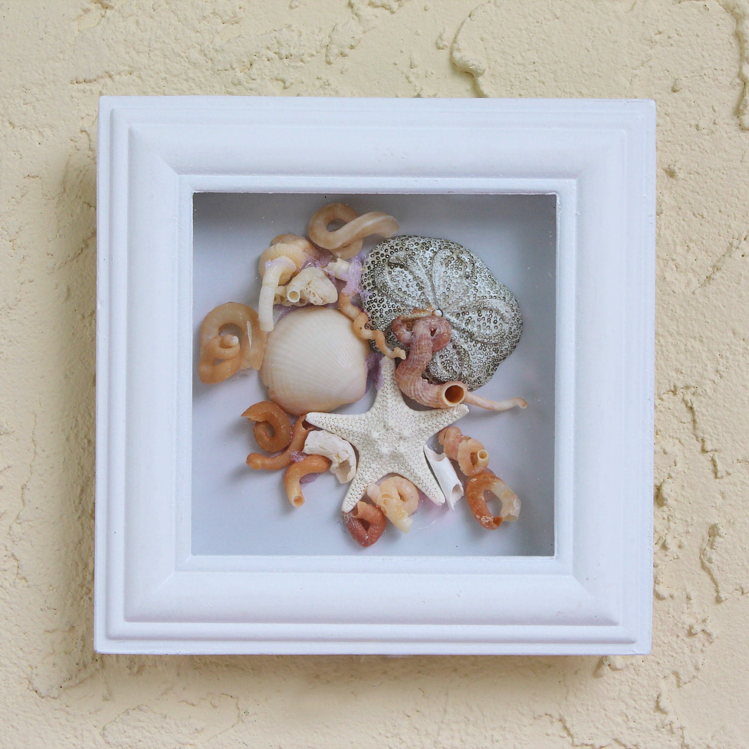 seashell beach decor starfish framed with glass by seastyle. Black Bedroom Furniture Sets. Home Design Ideas