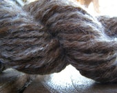 Suger N Spice and Everything Nice - A Super Soft Unique Handspun Yarn Blending BFL with Alpaca Cria
