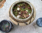 Forest Keeper ceremonial loose herbal/resin incense