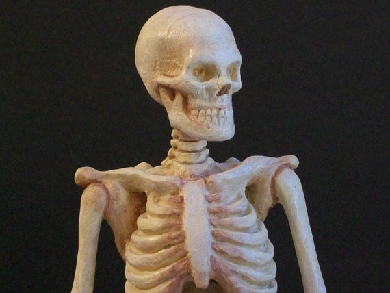 Handmade Polymer Bakeable Clay Skeleton Anatomical Study