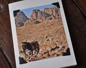 Photograph Note Card - Donkey in the Desert - Petra - Jordan