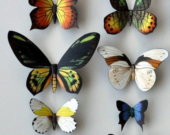 Butterfly Moth Magnets Set of 12 Insects Refrigerator Magnets Kitchen Decor Multi Color Home Decor