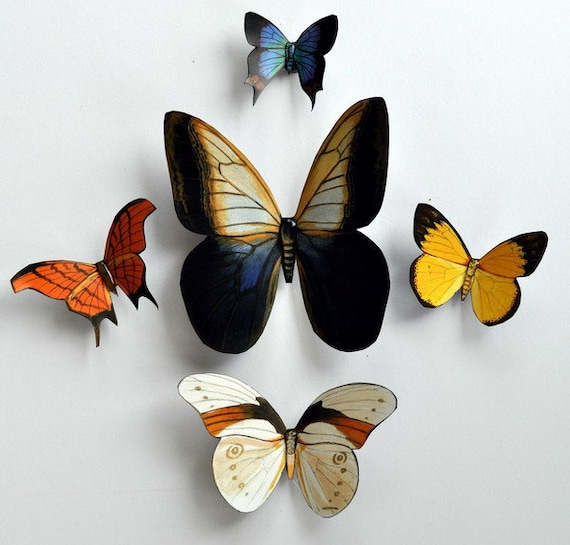 Butterfly Magnets, Insects, Set of 5 Refrigerator Magnets, Kitchen Decor, Handmade, Gifts