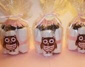 Owl Diaper Cake Package