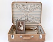 Amelia Earhart Suitcase Hard Camel Colored Case with Stripes Chrome Hardware Elegant Luggage