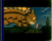 Original 35mm filmstrip MY NEIGHBOR TOTORO Miyazaki (5029)