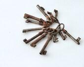Antique rusty Skeleton Keys Set