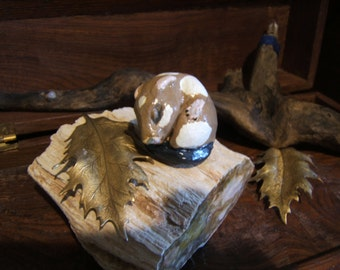 totem Hamster, sleeping baby...Notsuke...copy of an antique...so not-netsuke..  BEAU