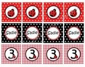Ladybug Themed DIY Printable Cupcake Toppers Red, Black, polka dots, gingham