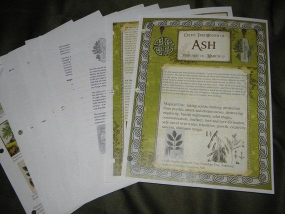 Celtic Tree Calendar Series: Ash Month Feb 18-March 17