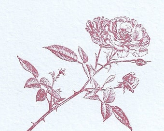 Letterpressed Rose Birthday Card