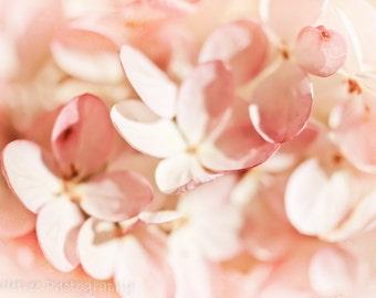 Pink Hydrangeas Nursery Decor Pastel Pink Floral Flowers Feminine Gift for Her Gardens Soft Dreamy, Fine Art Print