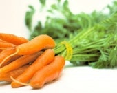 Carrot - Little Finger - Heirloom 100 Seeds
