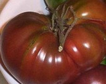 Tomato - Tula of Russia - Heirloom - Black - 25 Seeds
