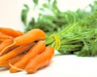 Carrot - Little Finger - Heirloom 100 Seeds