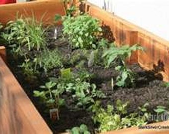 Patio Box Garden and Container Collection - Great for Apartments - 12 seed packs