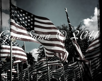American Flags 10x10 inch Photograph