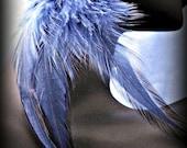 Long navy blue feather earrings