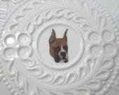 Boxer Plate, Handsome Dog on Ornate Shafford Creamware Plate