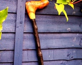 Handcrafted Miniature Blackthorn Walking Stick.