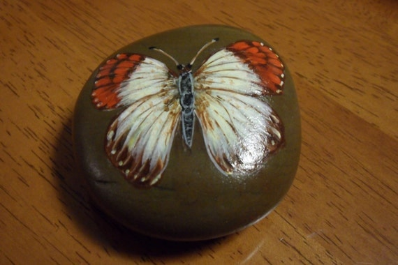 Butterfly hand painted rock