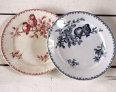 "Set of 2 dinner plates  French BIRDS Plates ""FAVORI "" Sarreguemines"